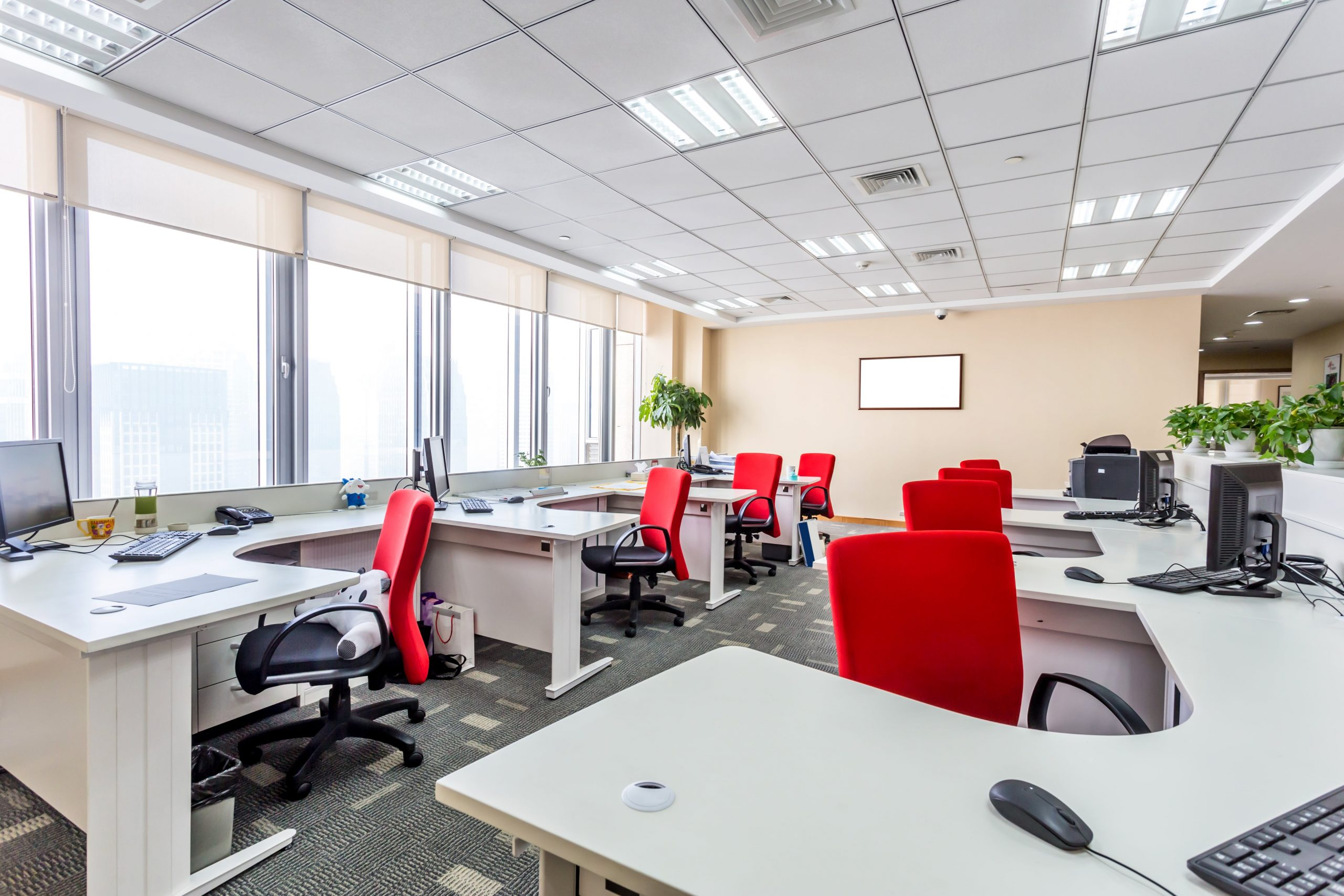 Bay Area Office Cleaning Professionals
